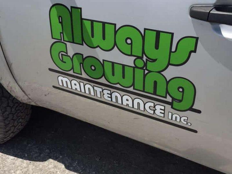 always growing maintenance